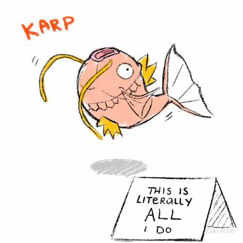 pokemon shaming magikarp