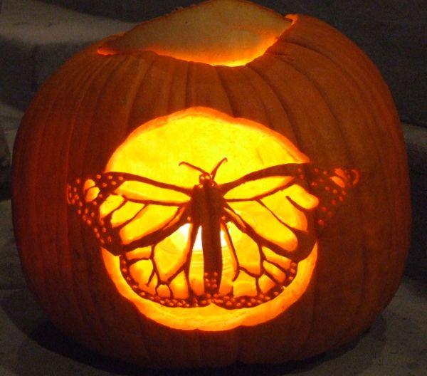 monarch pumpkin carving by heather ward wildlife art beauty rh pinterest com