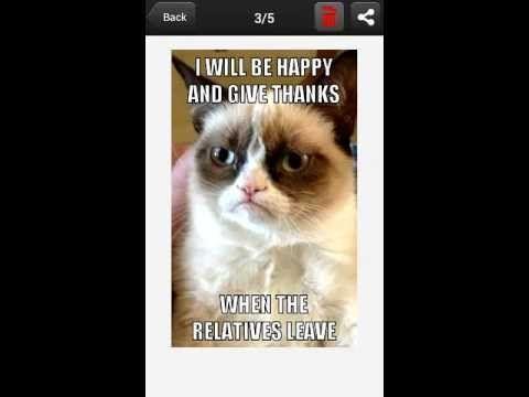 Grumpy Cat Meme Generator  #GrumpyCat #Memes