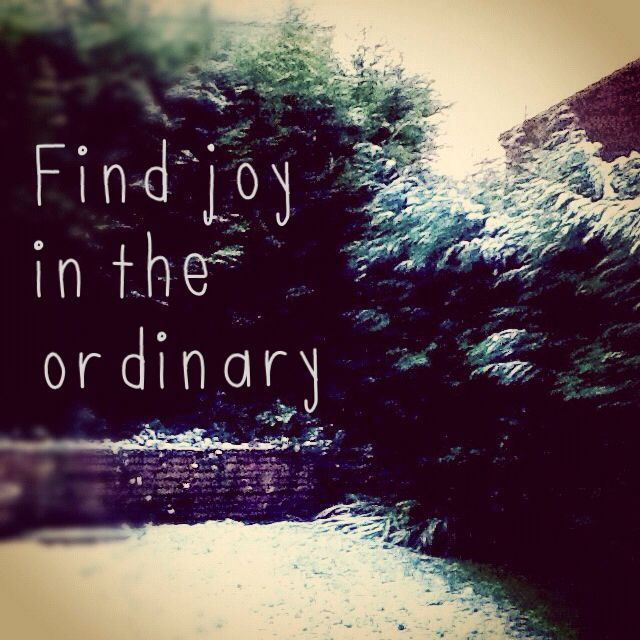 Quotes About Joy In Life: Find Joy In The Ordinary.