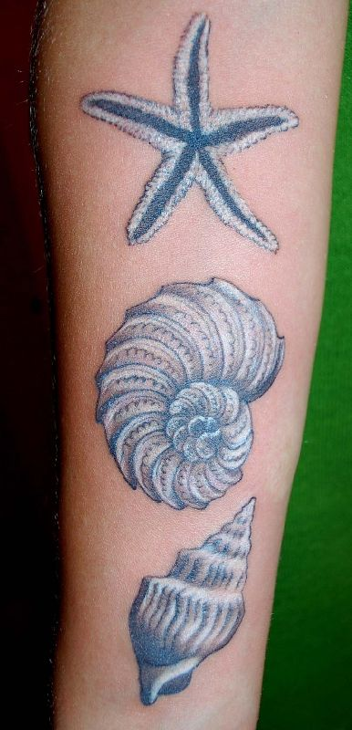 1000 images about tattoos on pinterest time tattoos for Seashell tattoo meaning