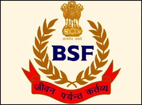 BSF-Tradesmen-Recruitment-2015-Constable-797-vacancies-application-form