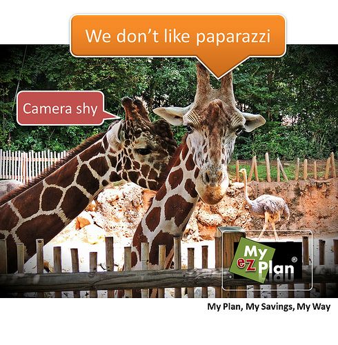 Hurrah ! Horrifying Animal | Need a vacation to plan your vacations? Find it all you need in one place. Visit myezplan.com and start enjoying your vacations… you're welcome! -  | Awesome Carnival Fun | Activities in Genoa in Italy #cute #pets #naturelover #farm #animallovers