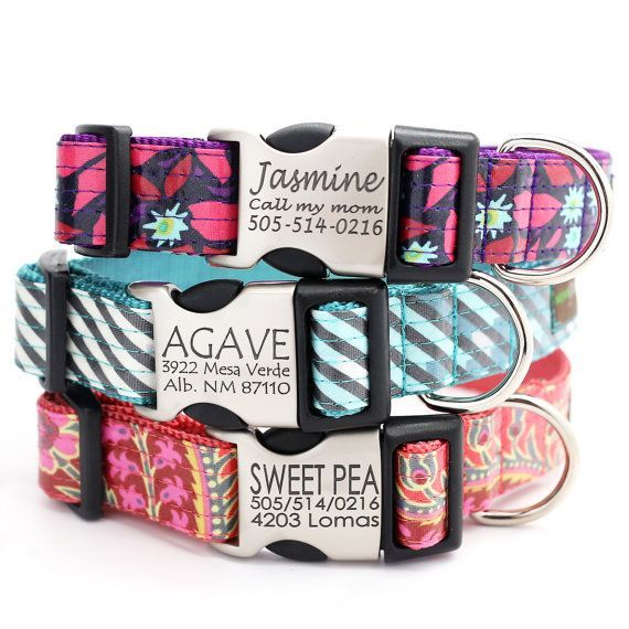Love these!  Definitely ordering them for both of my big babies. Personalized Laminated Cotton Laser Engraved Dog Collar with Metal Buckle - 10 styles