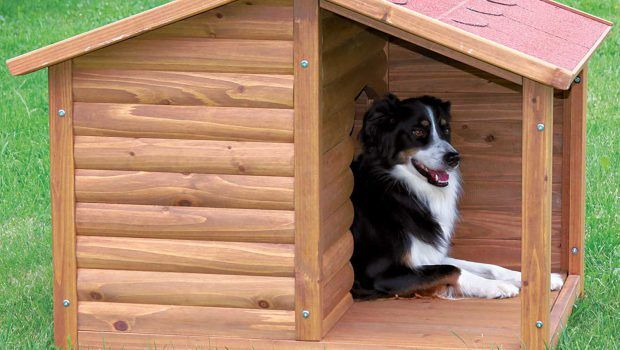 Afbeeldingsresultaat voor hondenren zelf maken   Hondenhok