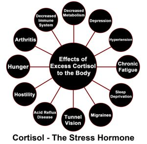 """10 Fun Ways To Reduce Your #Cortisol Levels - The body knows how to heal itself. they are beautifully equipped with natural self-repair mechanisms that fight cancer, prevent infection, repair wounds, protect us from infectious agents and foreign bodies, and even affect how our genes express themselves! But here's what most people don't know. These natural self-repair mechanisms get deactivated when your body is full of stress hormones like cortisol and epinephrine in """"fight-or-flight"""" mode."""