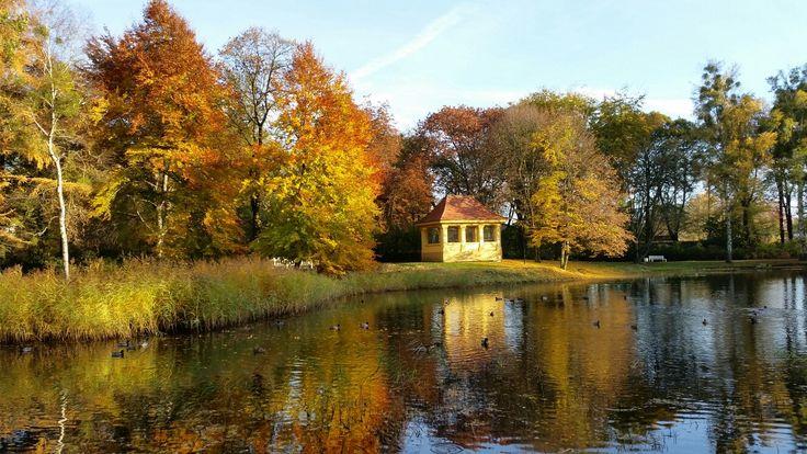 Senftenberg Schlosspark im Herbst