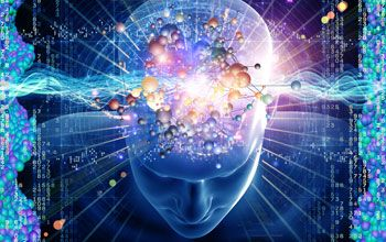 """""""Understanding the brain: the National Science Foundation and the BRAIN Initiative"""" on NSF"""