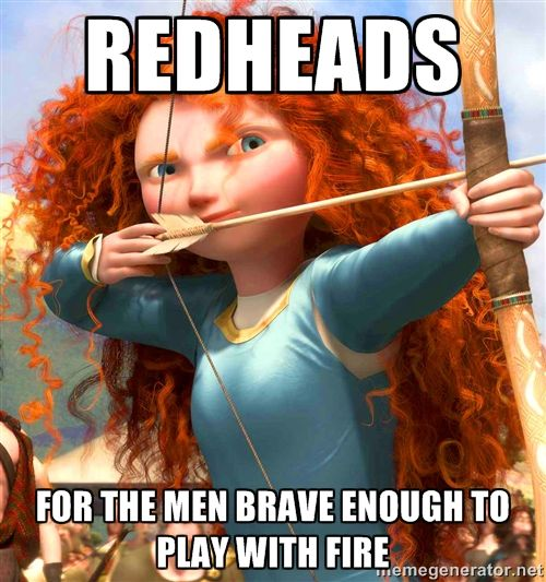 Funny Memes For Redheads : Redheads for the men brave enough to play with fire
