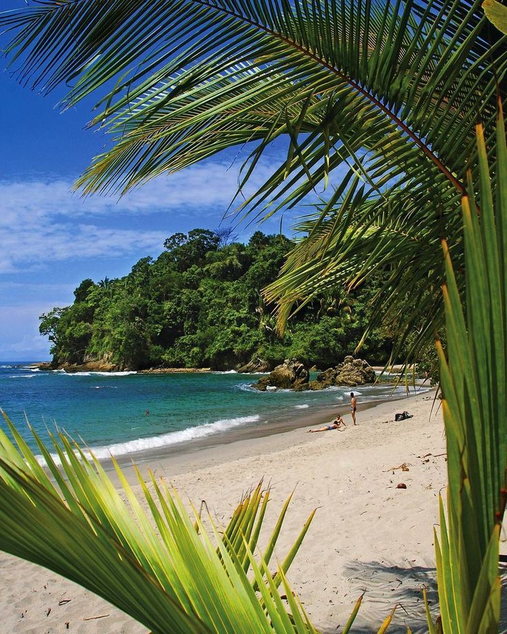 Not a bad view for Wednesday hump day - Manuel Antonio National Park  # @AndresMadrigalCR @costaricatraveler  #CRVrocks #CRVmoments #CostaRica #PuraVida #wildlife #travel #traveling #socialenvy #PleaseForgiveMe #vacation #visiting #instatravel #instago #instagood #trip #holiday #photooftheday #fun #travelling #tourism #tourist #instapassport #instatraveling #mytravelgram #travelgram #travelingram #igtravel