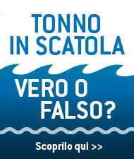 Tonno 360 - L' Italia ospita il 47° meeting di EUROTHON in occasione di EXPO