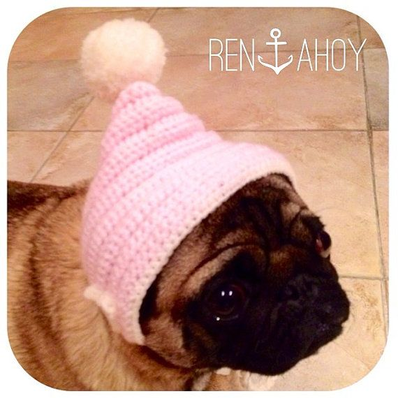 Pom Pom Hat Perfect for the Furry Faced One in by RenAhoyHeart