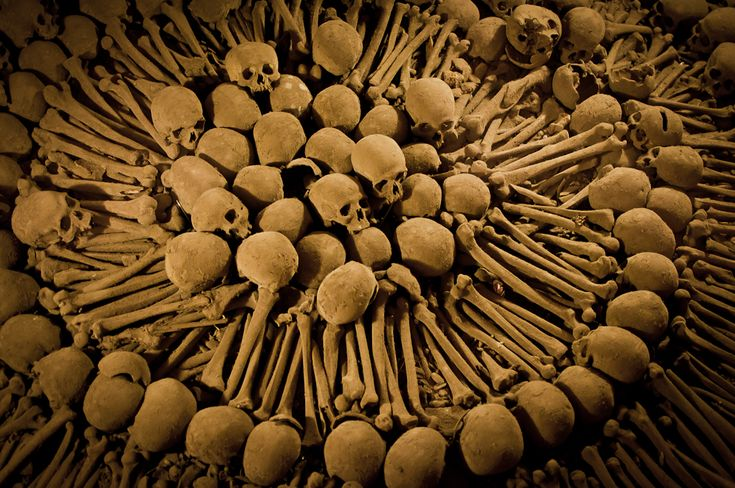 AFAR.com Place: Catacombs at the Catedral de Lima by Amie Watson