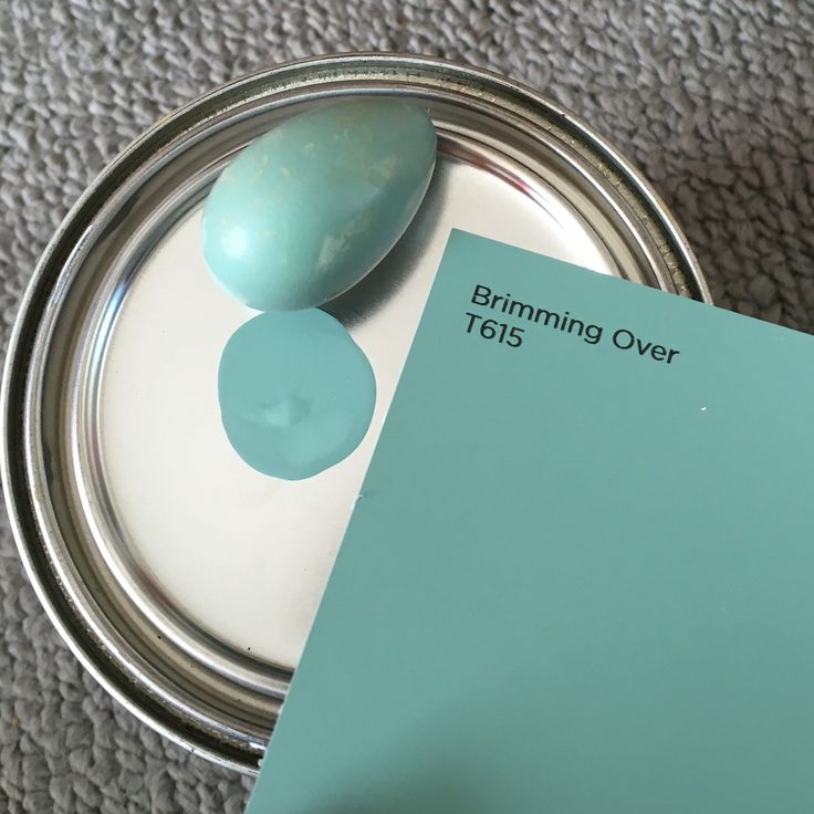 Robin's egg blue - actual, real robins egg - Valspar Brimming Over T615