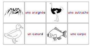 Un mémo des animaux pour lutter contre la dyslexie