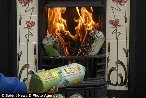 British inventor's green idea of using leaves to make fire logs | Daily Mail Online