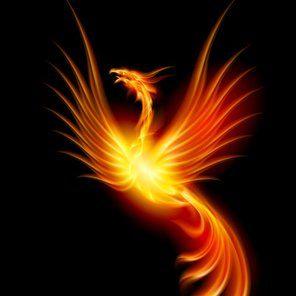 «Un uccello mitologico, che non muore mai, la fenice vola lontano, avanti a noi, osservando...