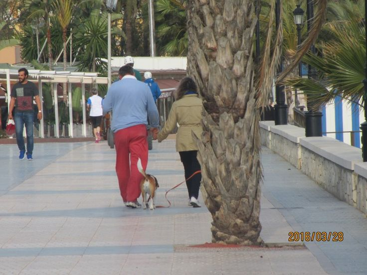 Испания..  Белые дома и красные брюки - КАНАДСКИЕ ЗАРИСОВОЧКИ: стихи, проза, коучинг, и жизнь, и слёзы, и любовь...