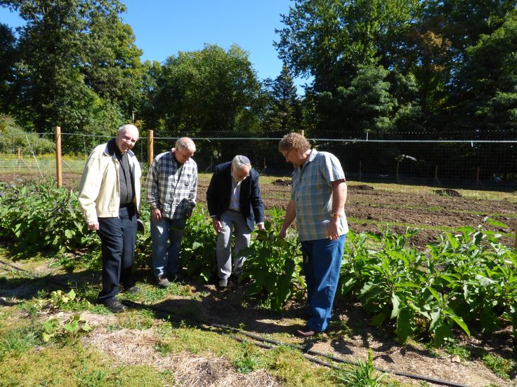 "Fr. John Keane chairs the Hunger Committee of Peekskill Area Pastor's Association.  In 2014, these pastor's of faiths started Garden of Hope on land donated by Church of the Nazarene to grow for a local food bank.  Pictured from left to right, Atonement Friar Fr. John Keane, Expert Gardener Bob Conboy, PAPA President Rabbi Lee Paskind and Pastor, Church of the Nazarene in Yorktown Hts Rev. Ron Pankey examine eggplants. ""Open your hand to the poor and needy neighbor in your land."" Deut.15:11"