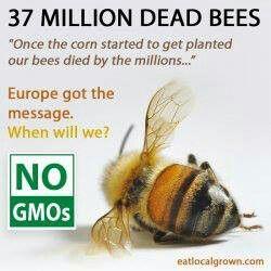 BOYCOTT GMO PRODUCTS