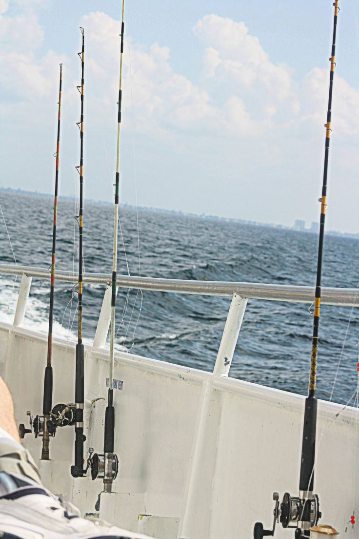 65 best images about fishing on pinterest for Deep sea fishing fort myers beach