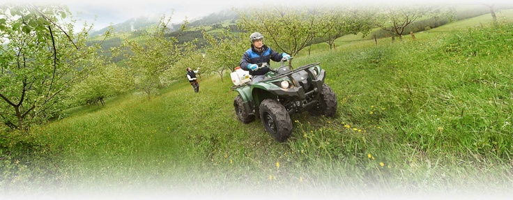 Quad Yamaha : Gamme quad loisirs et quad utilitaire : Yamaha Motor France