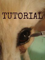 Art Doll Tutorial Links making eyes tutorial http://rebeccannoying.deviantart.com/art/The-Eye-Making-Tutorial-collection-of-parts-416076164