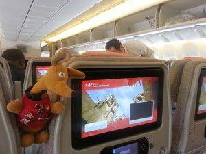 Ryjek wdrodze zColombo doSingapuru – 12 godzina lotu