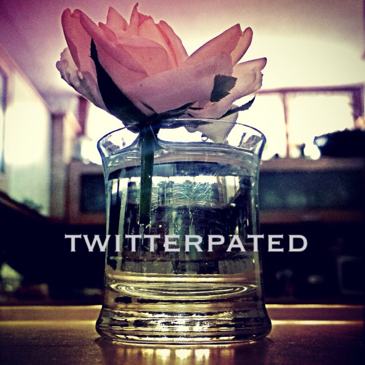 Twitterpated :)