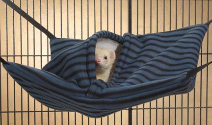 Unique 2-in-1 ferret cage accessory is a comfy hammock and a cozy hanging sleep sack.