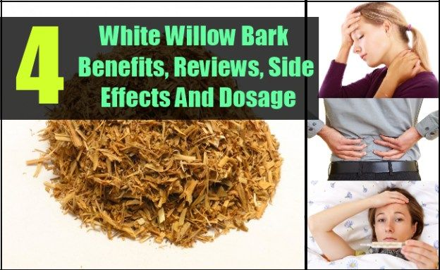 White Willow Bark Benefits, Reviews, Side Effects And Dosage
