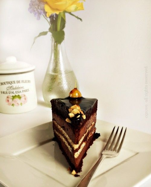 Chocolate Hazelnut Meringue and Mousse Cake