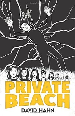 Private Beach  by David Hahn  Foreword by Jeff Parker  My rating: 5 of 5 stars   Paperback, 208 pages  Published July 20th 2016 by Dover P...