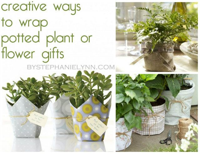 10 Creative & Crafty ways to wrap potted plants and Flowers~ Use for gifts, centerpieces, etc.