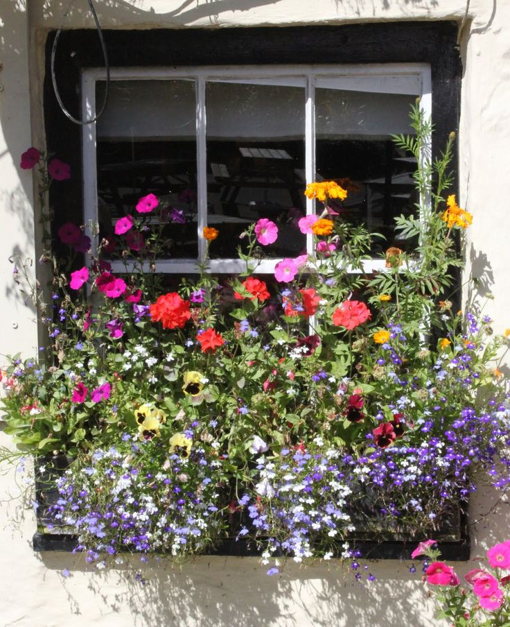 Window flower box.