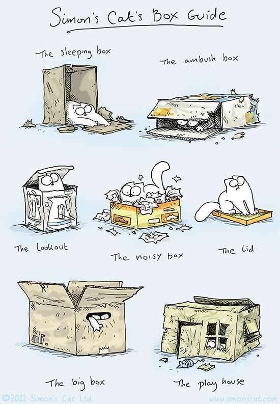 "Simon's Cat's Box Guide ... a cute graphic from one of my favourite sites ... ""Simon's Cat""."
