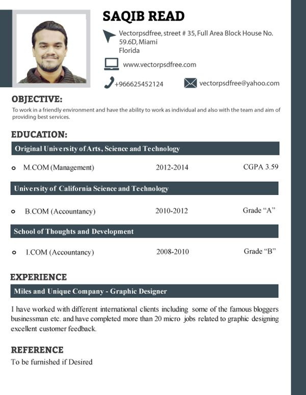 New Resume Format Sample