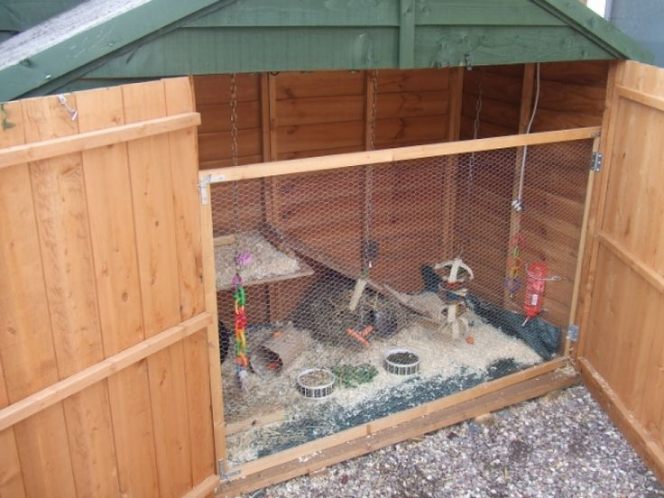 1000 images about guinea pig shed enclosure on pinterest for Rabbit house images
