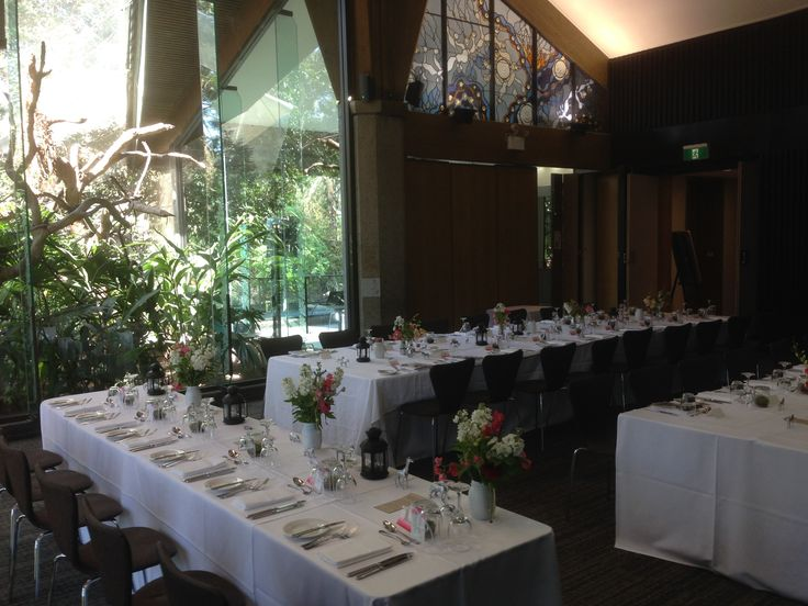 Melbourne Zoo Events. Wedding in Rainforest Room. Subtle, animals theming!