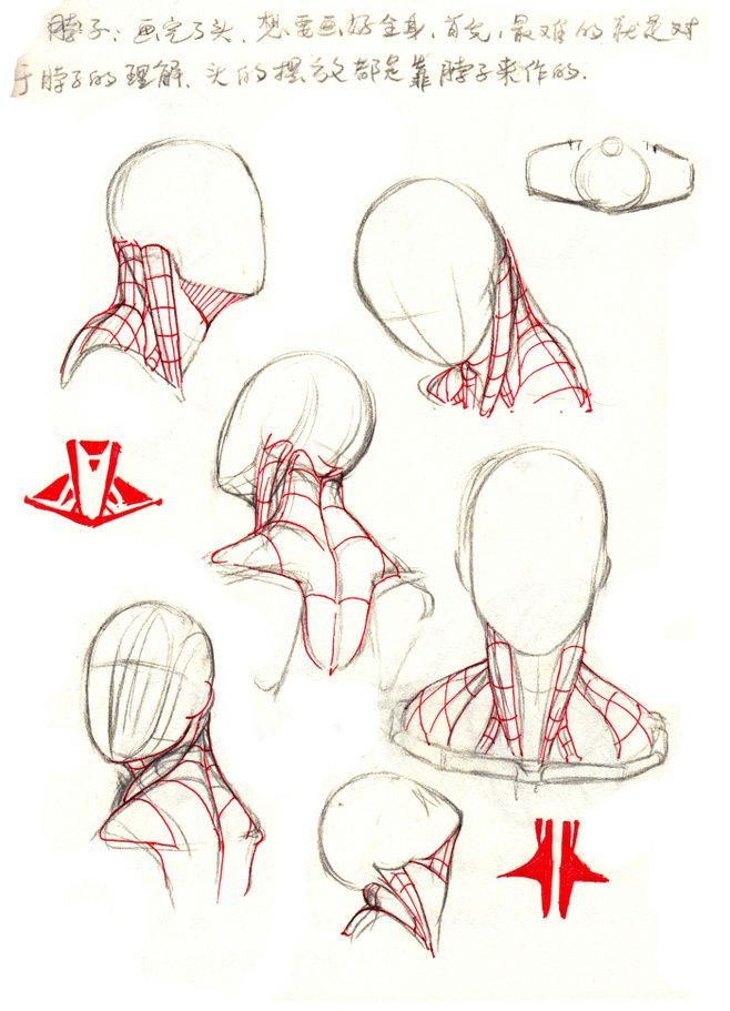 原创作品:【干货】春哥制造:人体结构绘画...