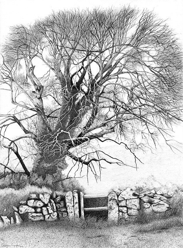 Landscape, pencil drawing