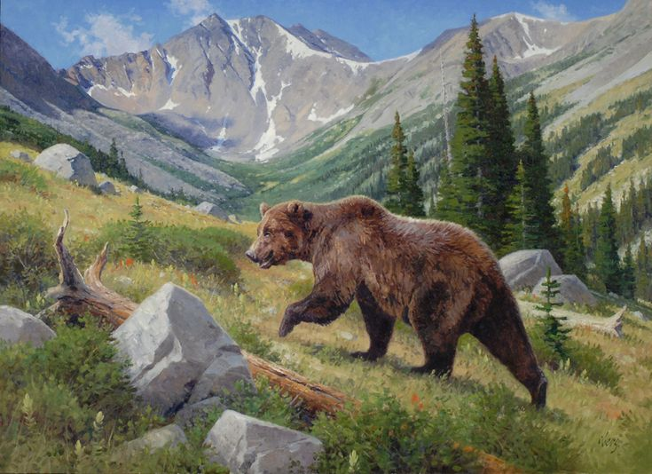 Grizzly bear painting by Ralph Oberg | Art - Wildlife - Bears ...: https://www.pinterest.com/pin/2111131049812900