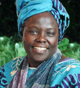 The late Wangari Maathai, the first African woman to win the Nobel peace prize. She was 71. Maathai was a pioneer from an early age and in many spheres. After winning a scholarship to study in the US, she returned to a newly independent Kenya, becoming the first woman in east and central Africa to obtain a PhD. Maathai was also the first woman professor the University of Nairobi, where she taught veterinary medicine.