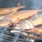 geräucherte-Forellen-und-Makrelen
