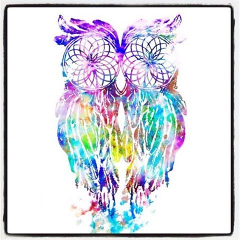 #LoveThis #Art #DreamCatcher #Painting #WaterColour #Mystical #Pretty #Colourful #Spiritual #Animal #Bird #Owl #OwlLove #Creative #Magical #DreamLand #Beautiful #Gorgeous #Amaze #ILoveThis #TattooIdeas