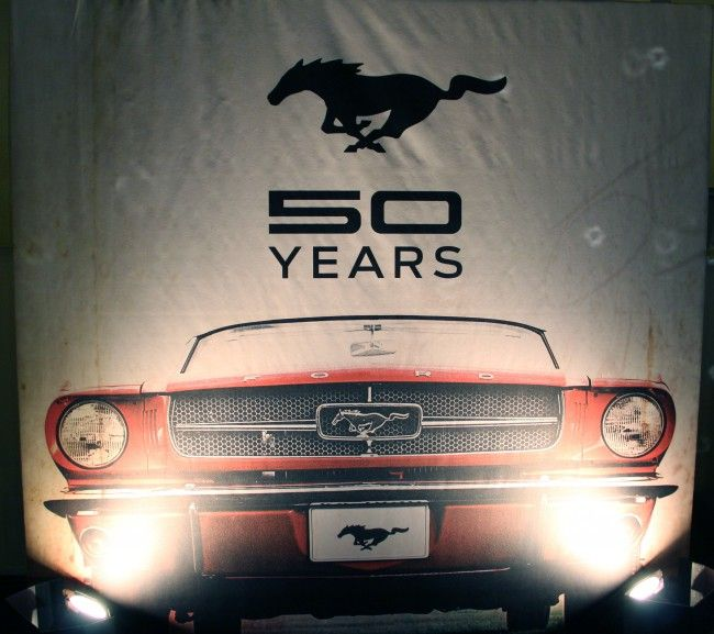 1965-50 years banner - #Ford #Mustang & 115 best Ford Mustang - Through The Years images on Pinterest ... markmcfarlin.com