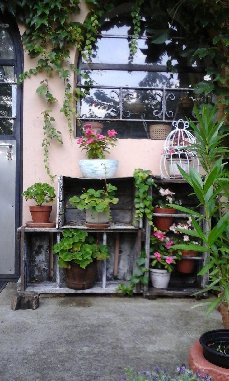 diy plant shelf