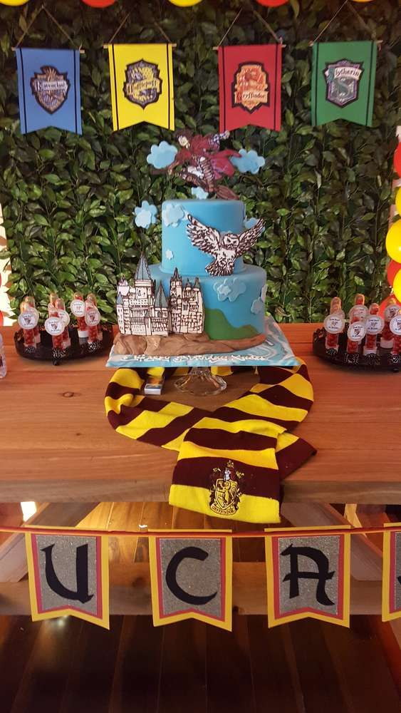 What a fun Harry Potter Birthday Party! Love the cake! See more party ideas and share yours at CatchMyParty.com