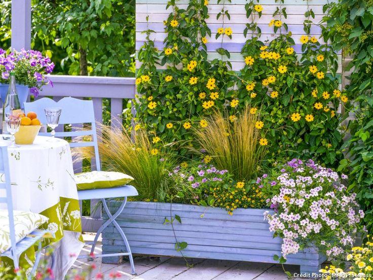 Voici des idées de jardinières d'étéqui vont vous permettre de mettre d'autres plantes en valeur. Toutes sont faciles à vivre et ne demandent que peu d'entretien.