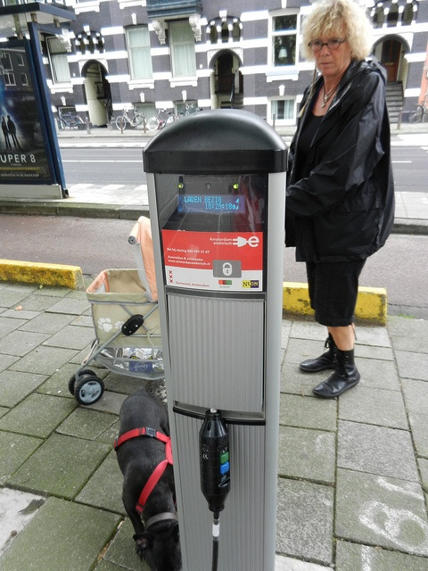 Tesla Electric Car Amsterdam